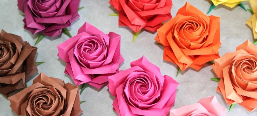 Roses de Naomiki Sato